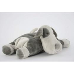 Hond liggend grijswit