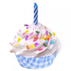Cupcake Bath Bomb Happy Birthday Boy