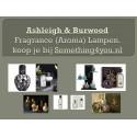 Ashleigh & Burwood video